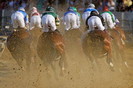 137th Preakness Stakes