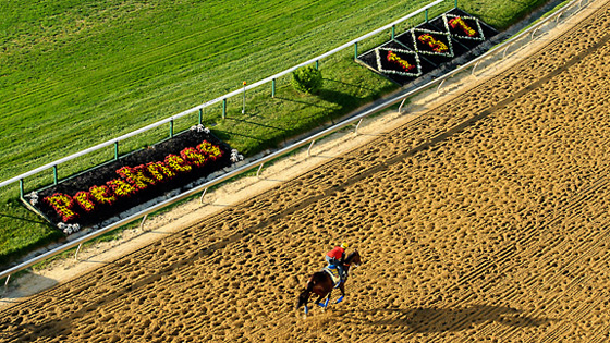 Preakness workouts