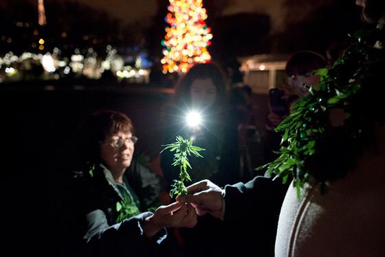 Washington legalizes marijuana
