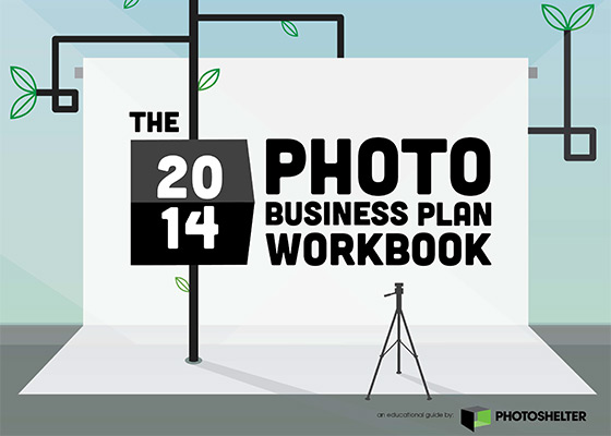 The 2014 Photo Business Workbook