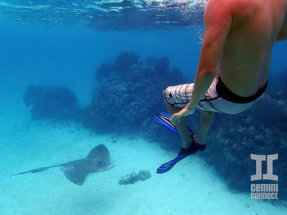 Mexico Rocks Snorkeling