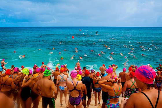 North Shore Swim Series