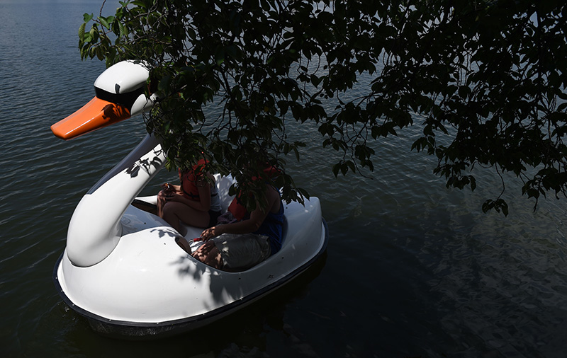 A couple of tourists takes a ride in the Tidal Basin in a Swan Boat Wednesday, July 6, 2016 in Washington D.C. (Photo by Christian K. Lee/The Washington Post)